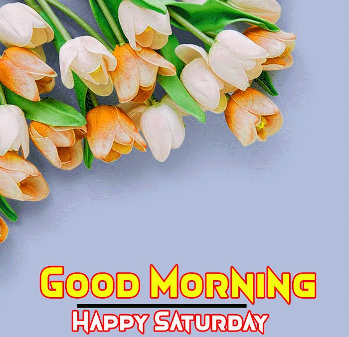 good morning wishes with flowers hd