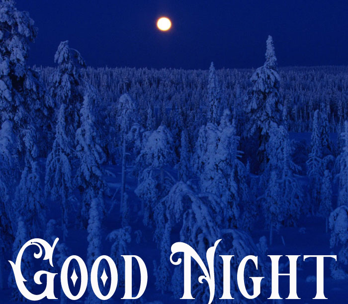 Good Night blue winter image hd download