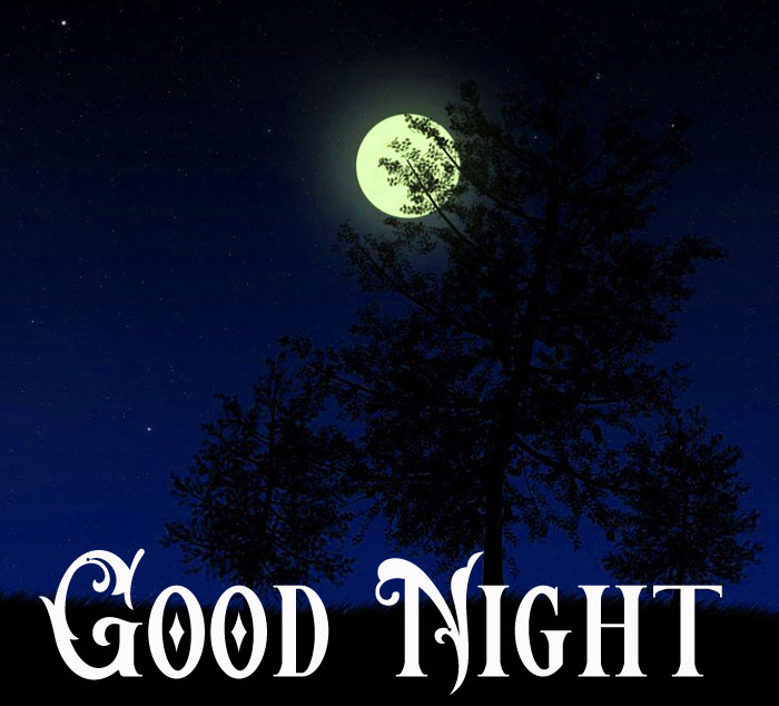 Good Night moon free download
