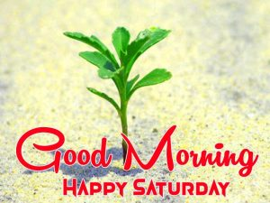 best green Good Morning Happy Saturday images hd
