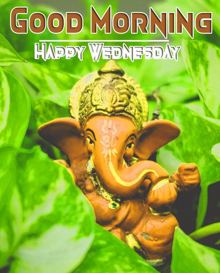 ganapathi good morning and happy wednesday image