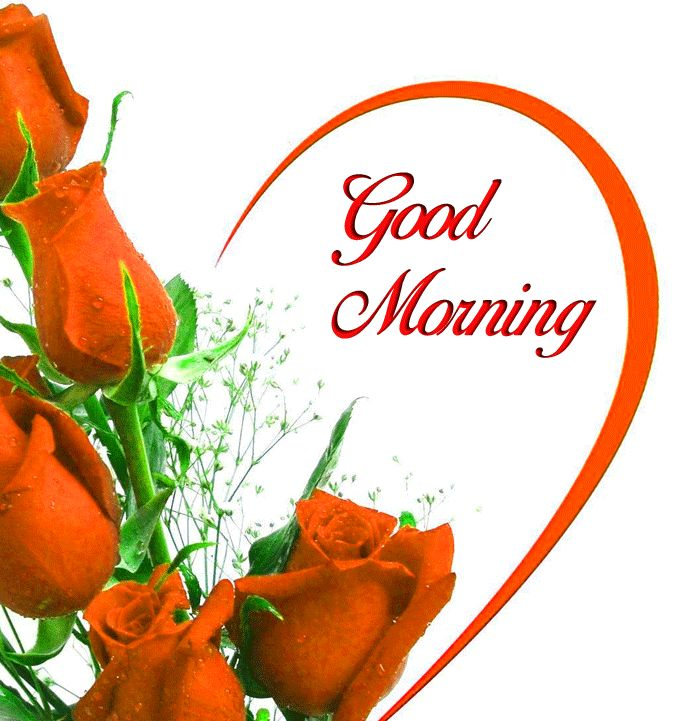 latest Good Morning images with love hd download