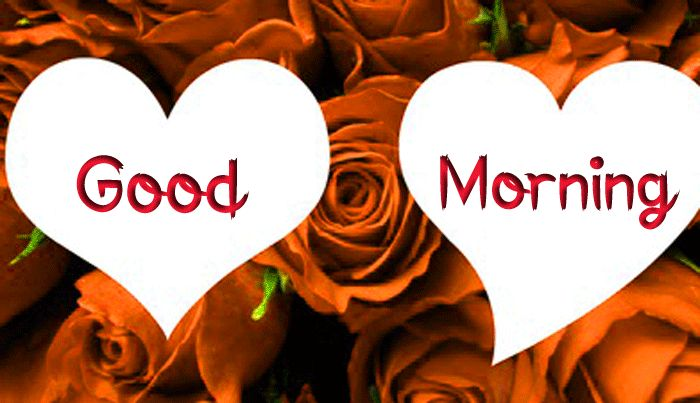 latest heart Good Morning hd picture