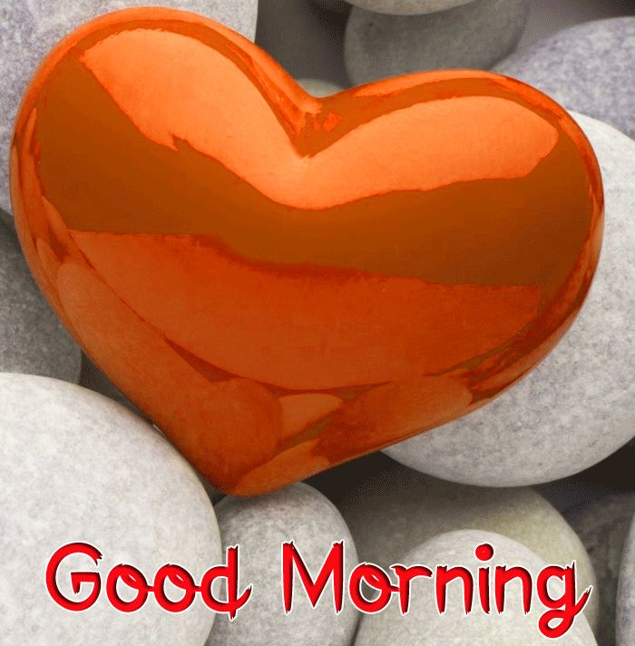 latest red heart Good Morning pics hd