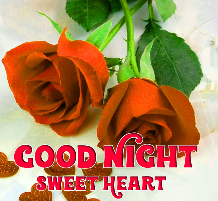 latest red rose Good Night Sweet Heart photo free download
