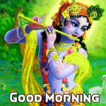 Best collection of good morning flowers with messages and quotes
