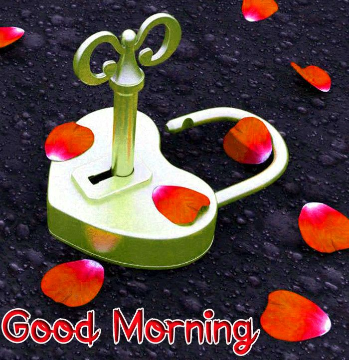 new love Good Morning images hd