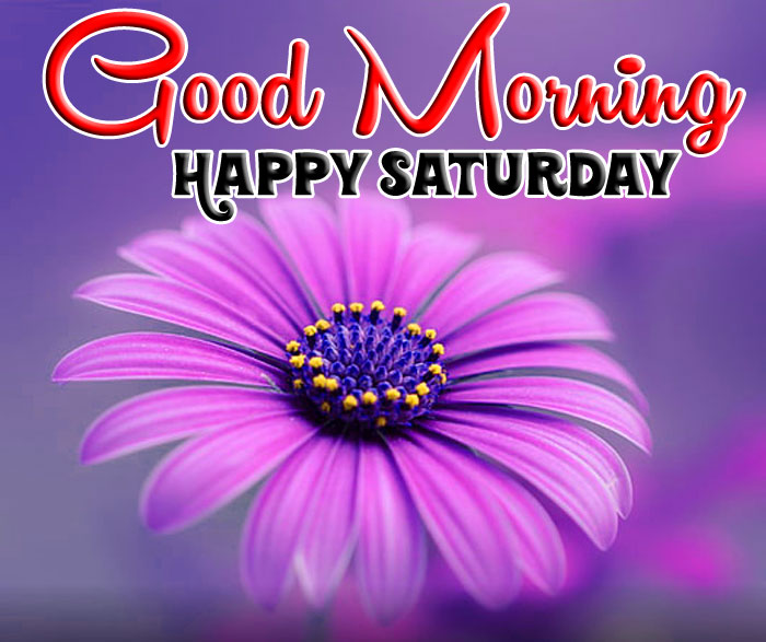 Good Morning Happy Saturday flower images hd