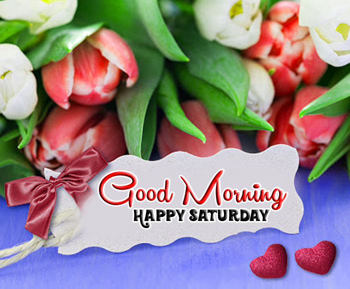 colorful flower Good Morning Happy Saturday images hd