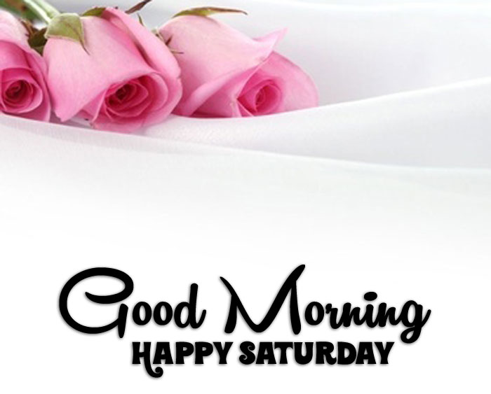 latest Good Morning Happy Saturday flower images hd