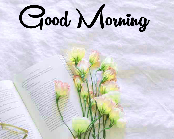 Good Morning wishes flower images hd