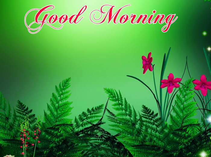 nature Good Morning photo for whatsapp hd