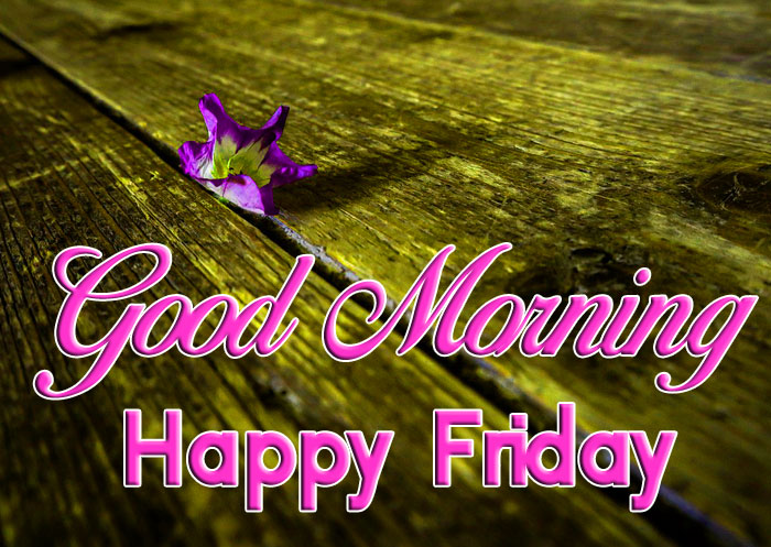 nice cute Good Mornin Happy Friday images