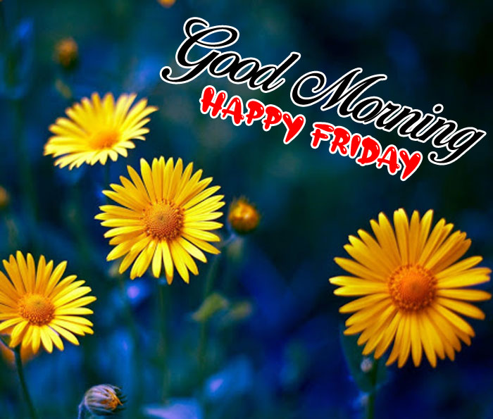 yellow flower Good Morning Happy Friday images hd