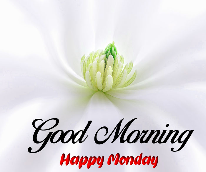 Good Morning Happy Monday images hd