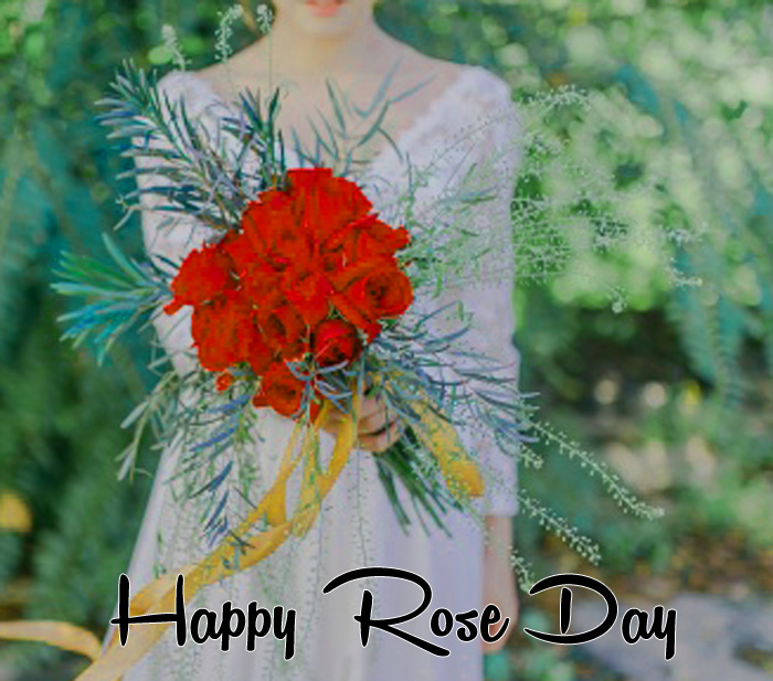 Happy Rose Day images for love hd