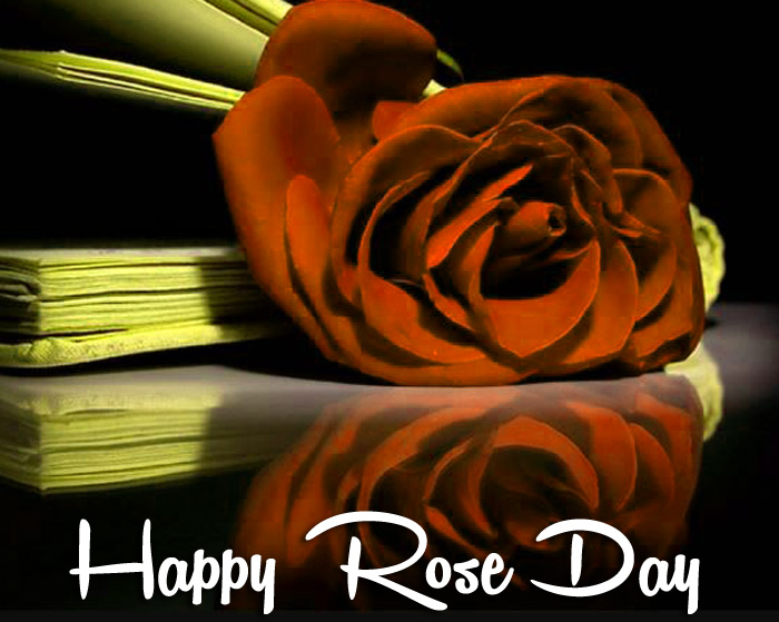 Happy Rose Day red flower pics