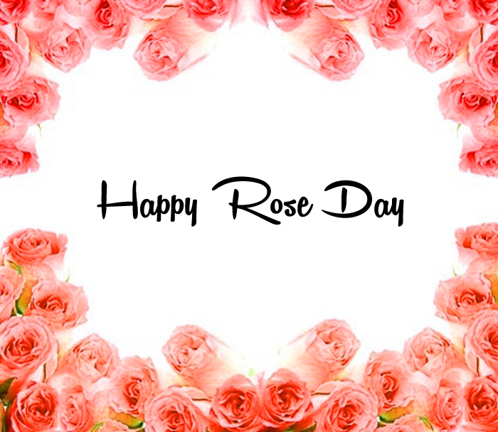 Happy Rose Day side of the pink flower images