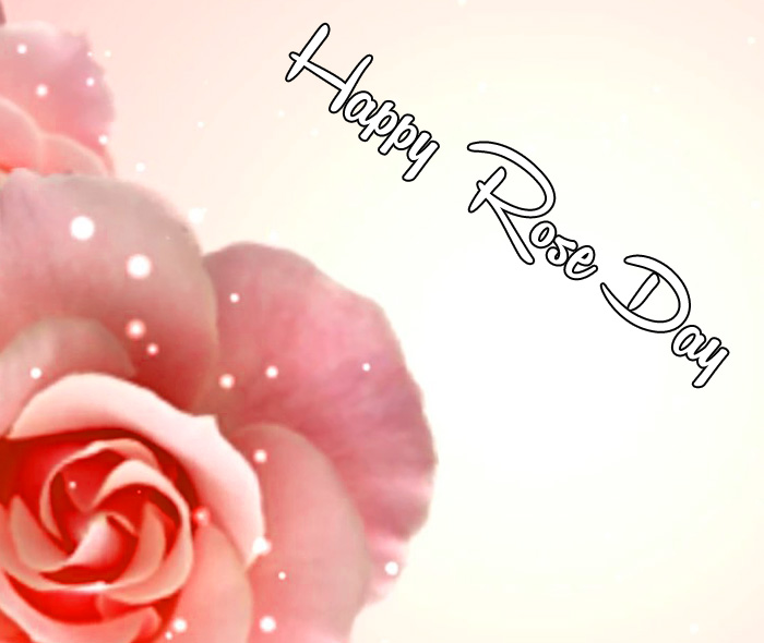 Happy Rose Day wallpaper for whatsapp hd