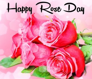 beautiful flower Happy Rose Day pics hd