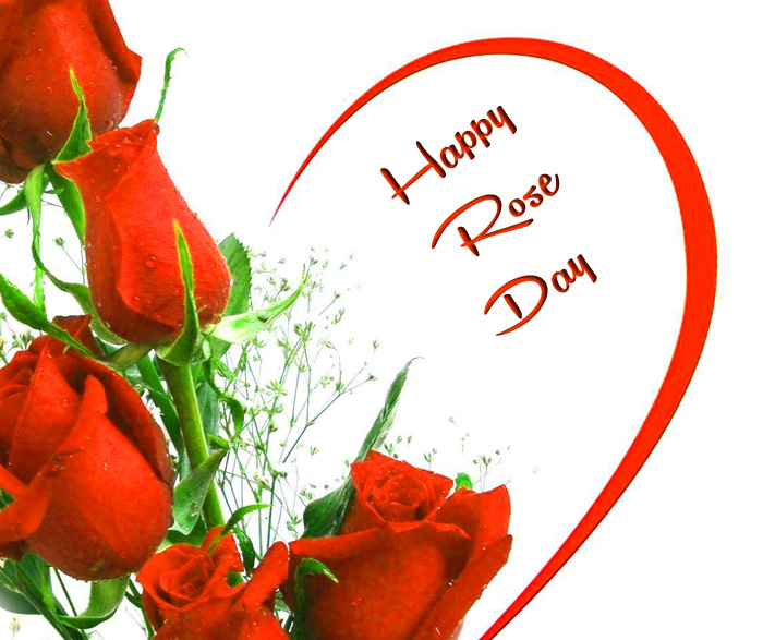 beautiful red flower Happy Rose Day hd