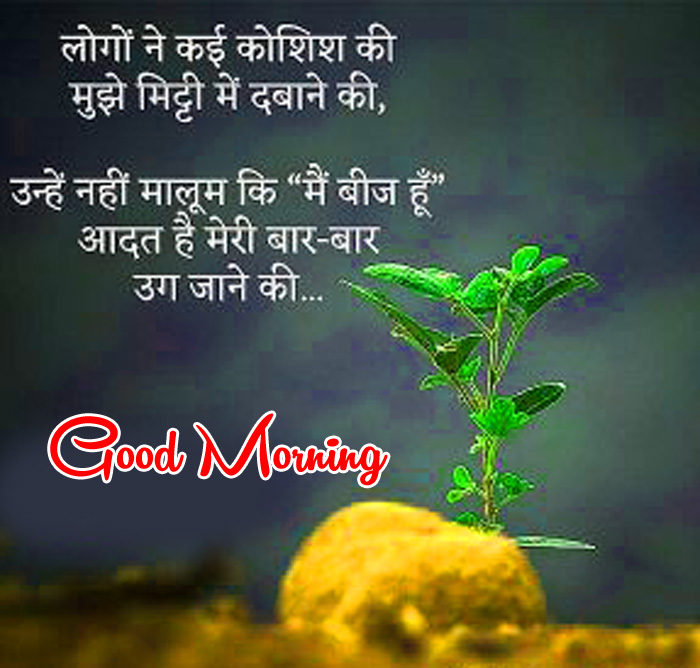 best Good Morning quotes in hindi pics