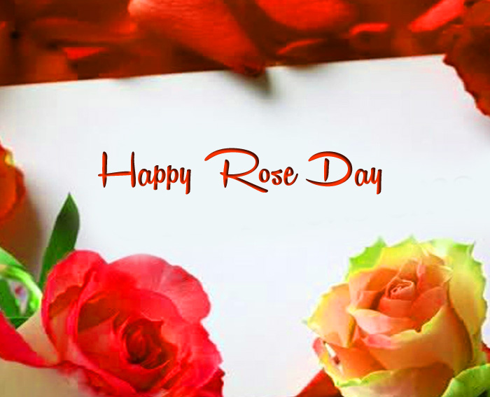 best Happy Rose Day pics for whatsapp hd