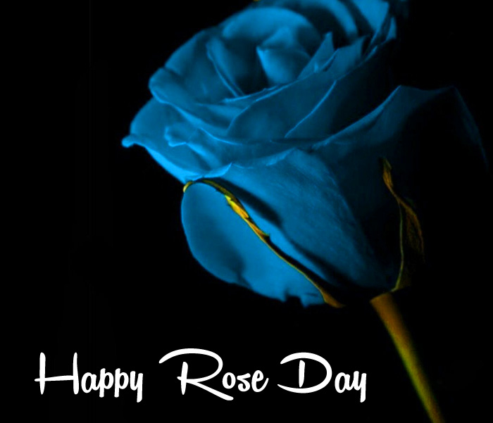 best blue flower Happy Rose Day hd
