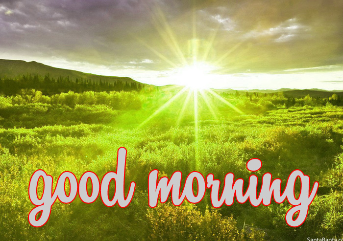 best nature good morning hd images download