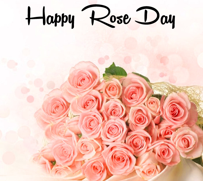 best pink flower Happy Rose Day hd
