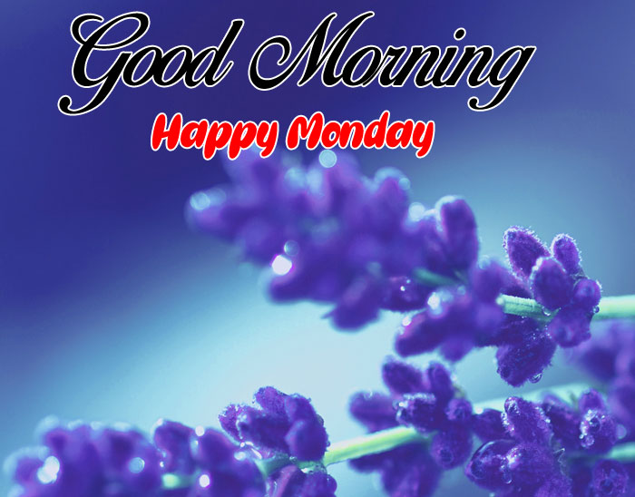 best purple Good Morning Happy Monday images hd