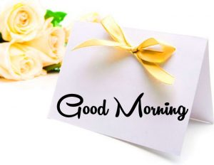 card flower Good Morning pics hd