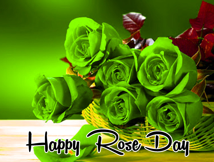 green flower Happy Rose Day hd photo