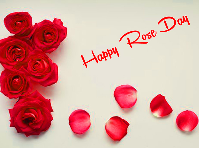 latest Happy Rose Day hd photo
