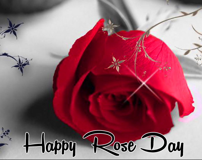 latest Happy Rose Day red flower images