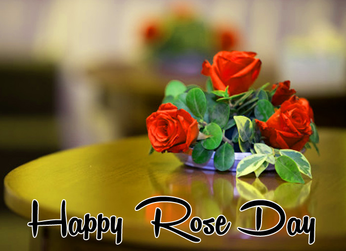 latest Happy Rose Day sad flower hd