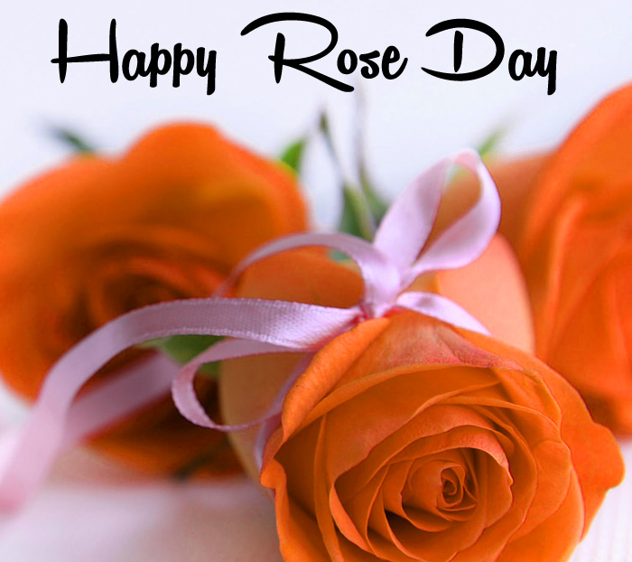 latest love flower Happy Rose Day hd