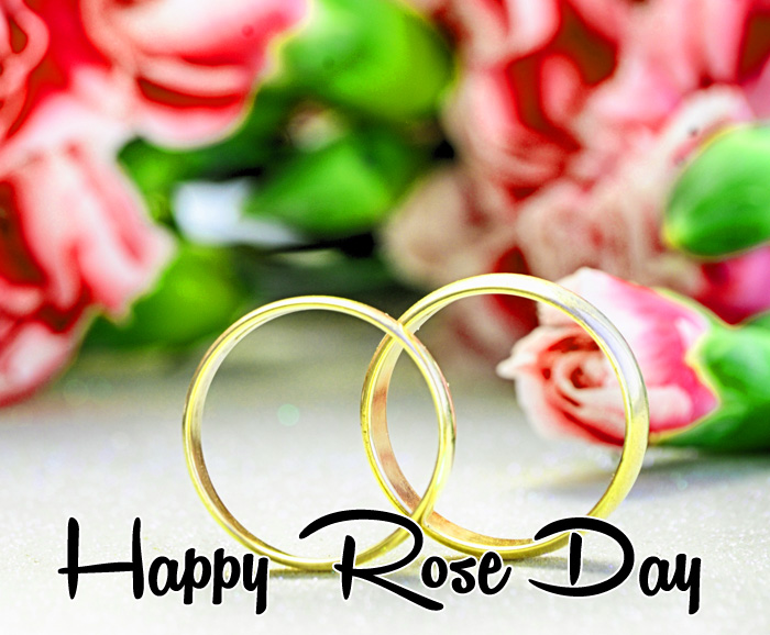 latest pink flower Happy Rose Day hd photo