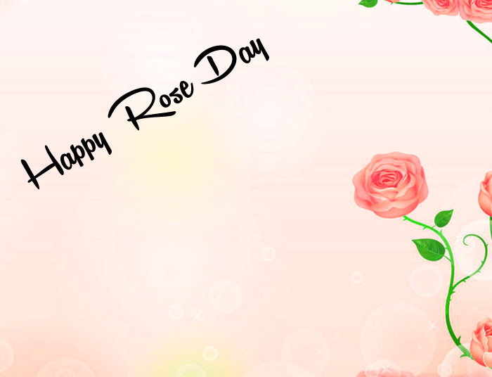 latest red flower Happy Rose Day Gift hd