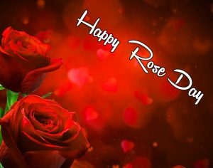 latest red flower Happy Rose Day hd
