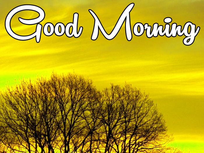 latest sunrise Good Morning nature hd
