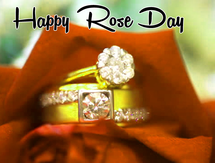 love flower Happy Rose Day hd images
