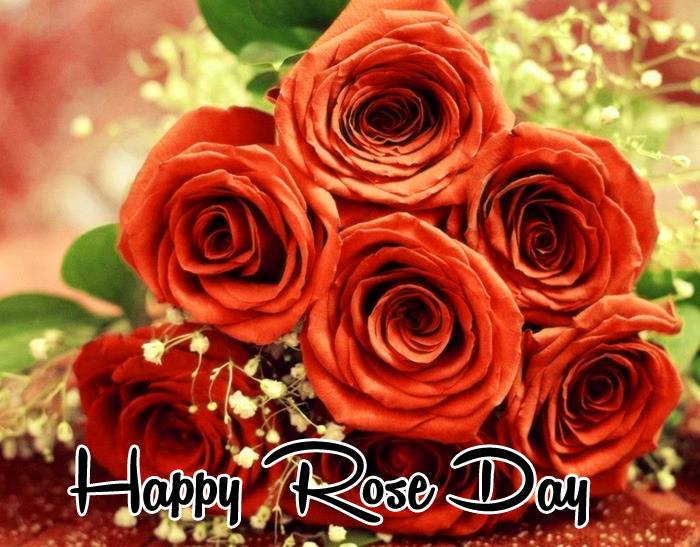 love flower Happy Rose Day hd photo