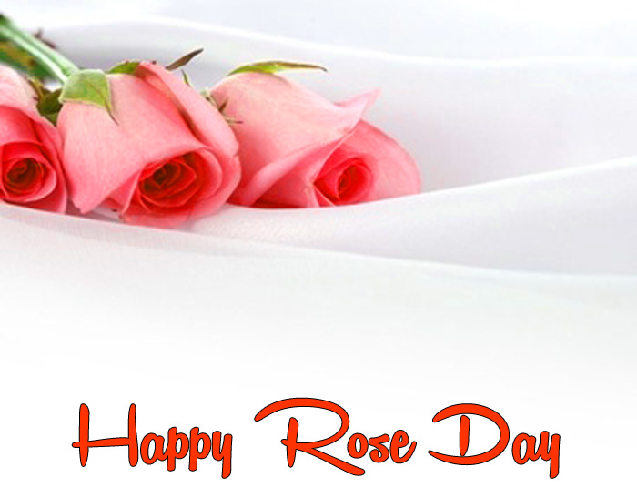 new Happy Rose Day hd wallpaper