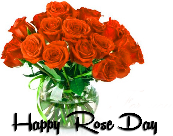 new flower Happy Rose Day hd photo