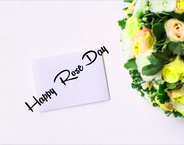 nice Happy Rose Day hd