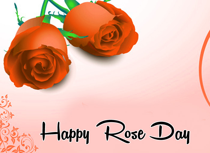 nice Happy Rose Day red flower hd