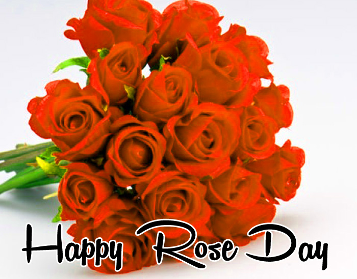 nice flower Happy Rose Day Gift photo