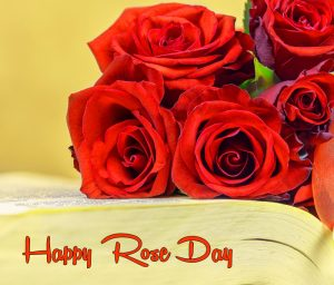 nice flower Happy Rose Day hd photo