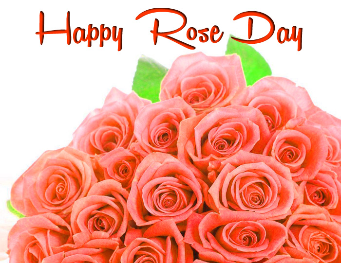 pink flower Happy Rose Day Gift hd